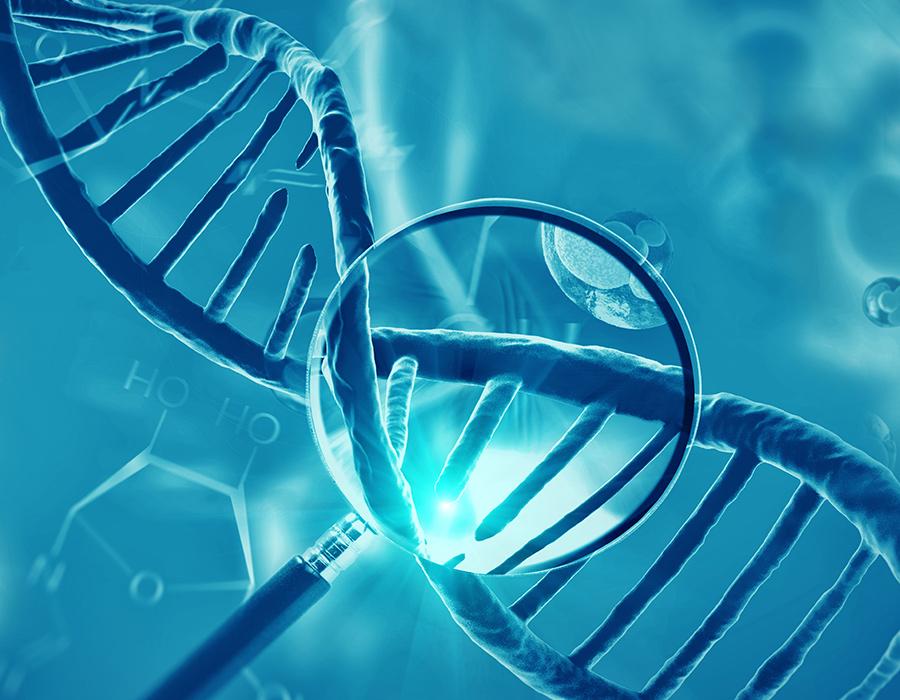 Proyecto de investigación de la Fundación IERA sobre la fragmentación de ADN de los espermatozoides.